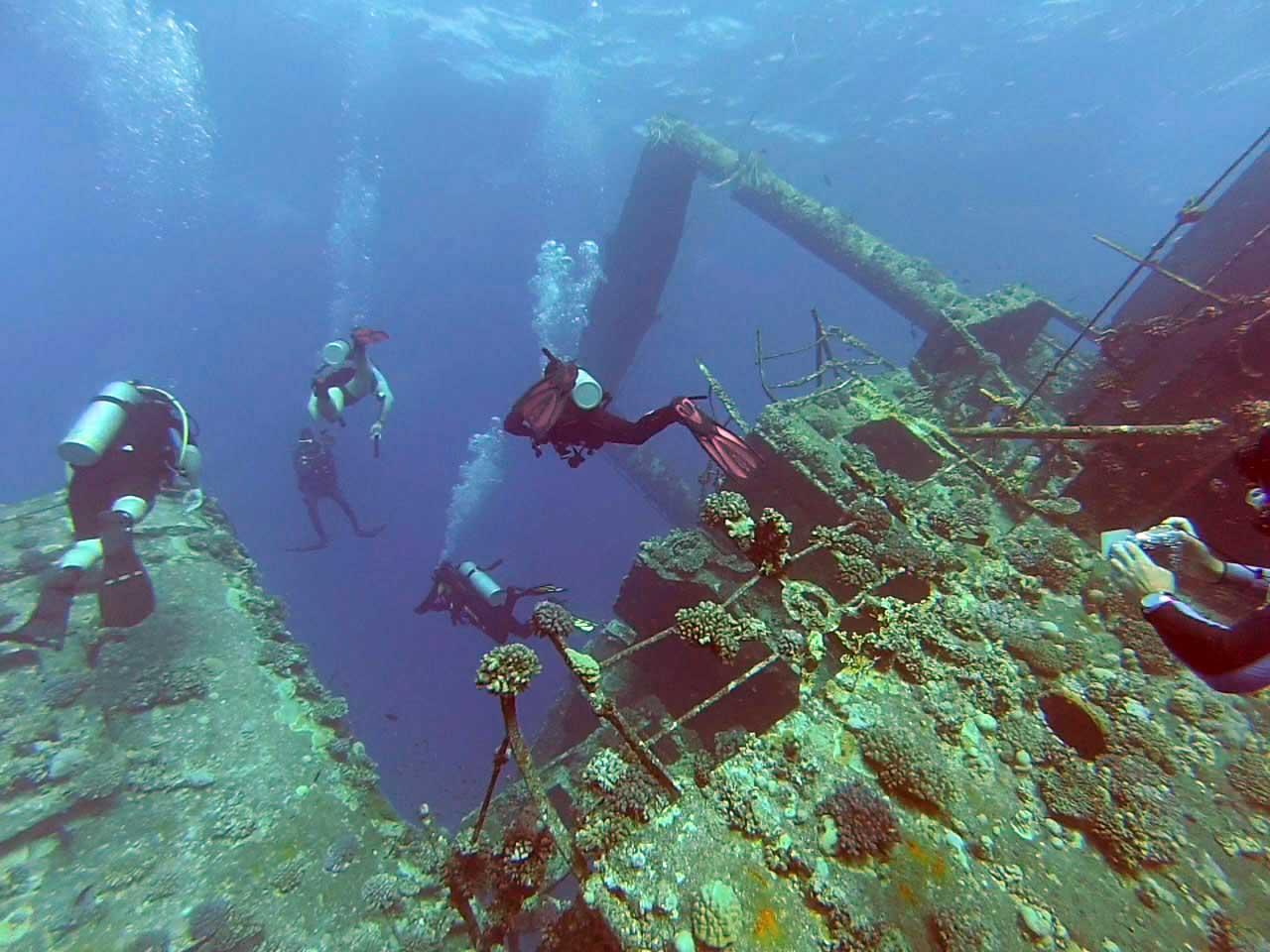 Дайвинг на Средиземном море