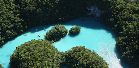Потрясающей красоты Дайвинг в Палау